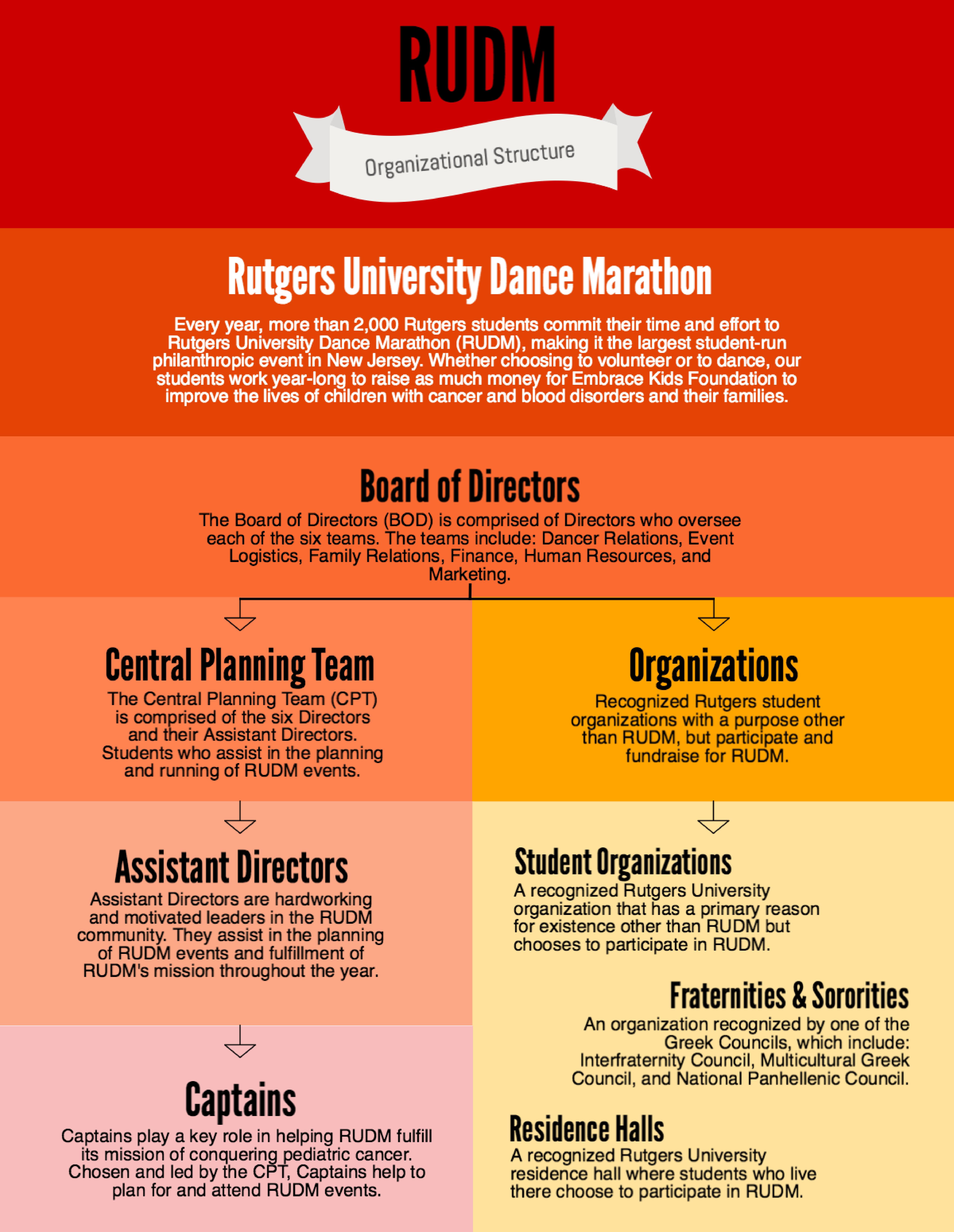 rudm-organizational-structure-01