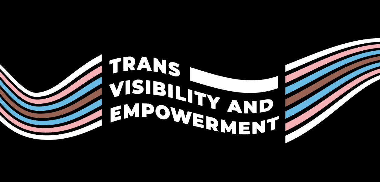 Trans Visibility and Empowerment Landing Banner