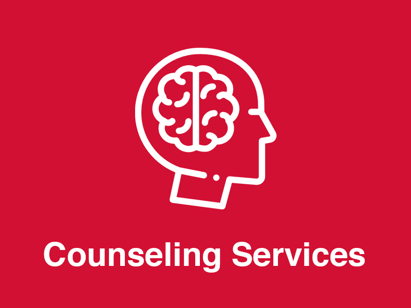 Counseling Services Icon