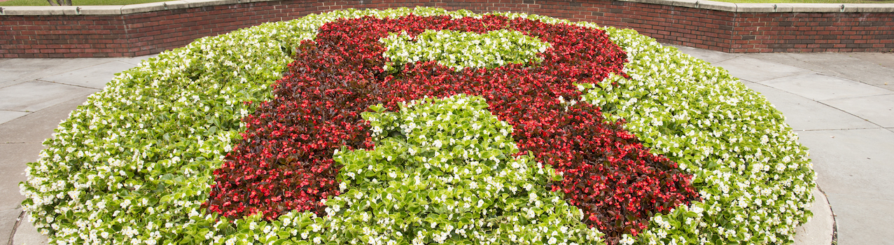 An R made up of red and white flowers in front of the College Ave dorms.