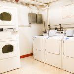 NewGibbons_Laundry