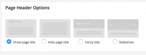 Example of How Page Title options on Edit Page screen