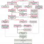 Research and Assessment Flowchart
